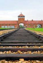 Auschwitz-Birkenau, main track. (2004, C. Puisney)