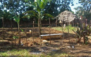 Part of church land sought by hard-line Muslims outside of Zanzibar City. (Morning Star News)