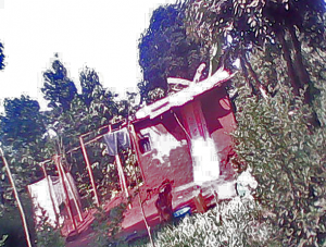 Damaged red pepper plantation and store of Kuluseni Iguru Tenywa. (Morning Star News)